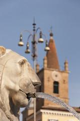 Piazza del Popolo Lion Head