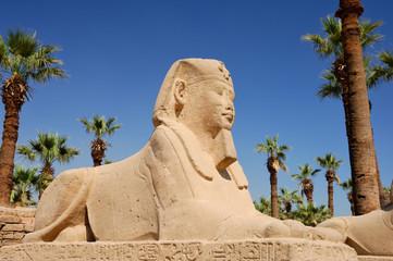 Sphinx - Criosphinx du dromos au corps de lion à tête du phara