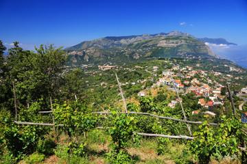 Wine on the Amalfi Coast of Tyrrhenian Sea (Campania, Italy)