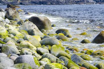 Rounded stones on the seashore