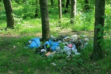 Garbage in the forest