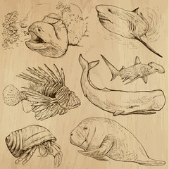 Underwater, Sea Life (vector set no.4) - hand drawn