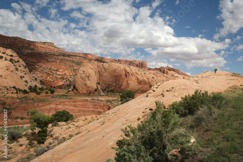 canvas print picture Zion Nationalpark Landschaft