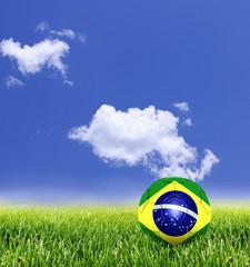 Bola do Brasil no Gramado
