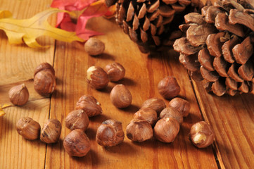 Hazelnuts on an autumn setting