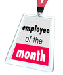 Employee of the Month Badge Name Tag Top Performer Award