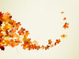 Autumn background template. EPS 10