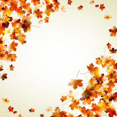 Flying leafs autumn. EPS 10