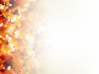 Falling autumn leaves on light. EPS 10