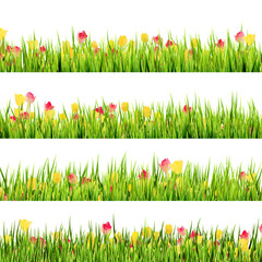 Green grass and beautiful spring flowers. EPS 10