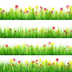 Grass And Flower Set, Isolated On White. EPS 10