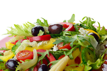 Healthy vegetable fresh organic salad over white