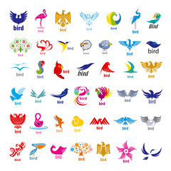 biggest collection of vector logos birds