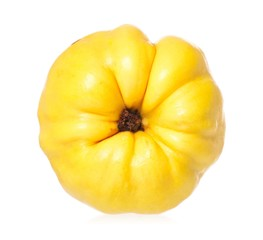 Yellow quince