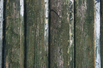 Weather-beaten wooden wall of a shed