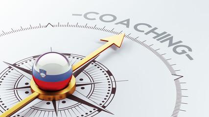 Slovenia Coaching Concept