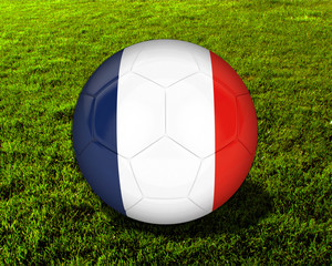 3d France Soccer Ball with Grass Background - isolated