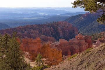 Bryce Canyon in the morning light