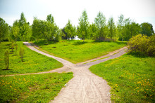 """Постер, картина, фотообои """"Fork in the road in the park and blooming dandelions"""""""