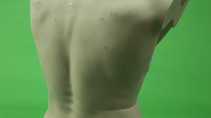 male torso isolated on chroma green screen background abs