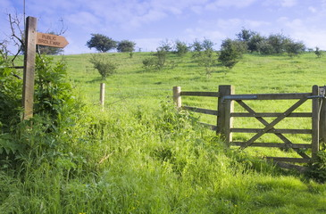 Public Bridleway and Gate, East Yorkshire