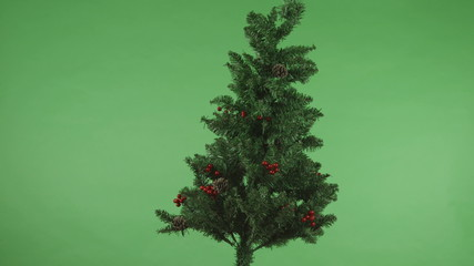 christmas tree isolated on chroma green screen background full