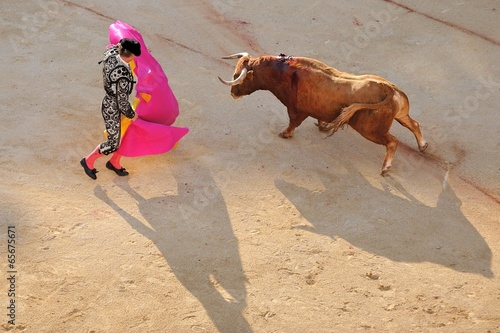 Leinwanddruck Bild la corrida