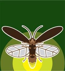 Firefly vector
