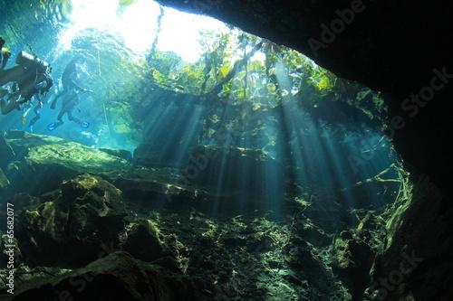 Aluminium Koraalriffen Entrance area of cenote underwater cave