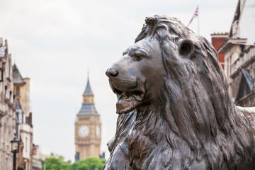 Lion in Trafalgar Square. London, England