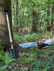 Shovel at the tree and man lying in the forest