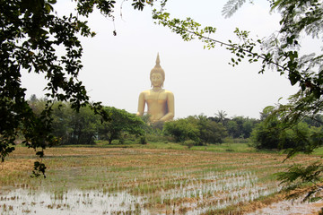 The huge Buddha Statue in Wat Muang, Thailand
