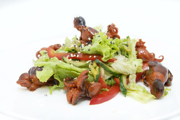 salad of octopus and cabbage leaves on a white background