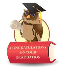 scholar owl