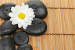 The spa a stone on bamboo background