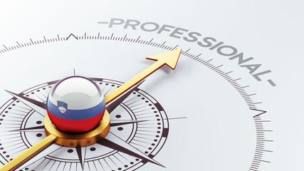 Slovenia Professional Concept