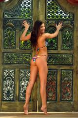 Model in bikini posing in front of old wooden gate