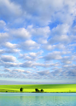 "Постер, картина, фотообои ""field"""