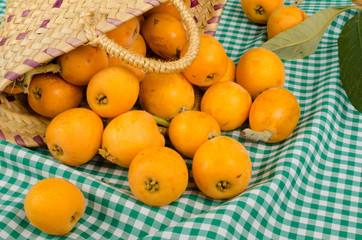 Basket with loquat