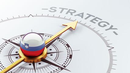 Slovenia  Strategy Concept