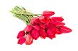 bunch of red tulips isolated on white