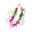 Creative feather