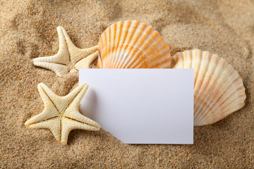 Starfish, seashells and blank paper sheet