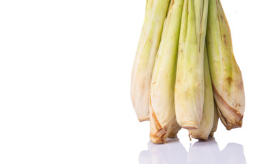 A bunch of lemongrass over white background