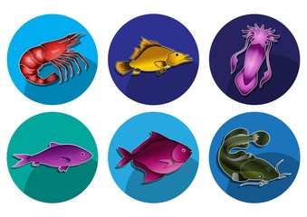 marine life icon