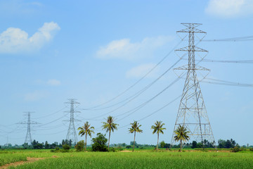 High voltage power lines in the up-country