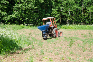 Farmer sow buckwheat seeds in field with tractor