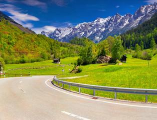 Alpine meadows in the Alps, Switzerland.