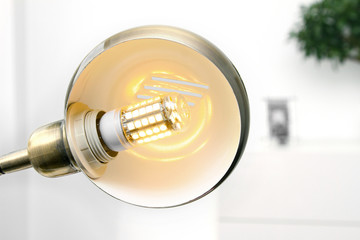 lamp with led light bulb