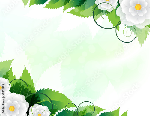 Green leaves and white flowers